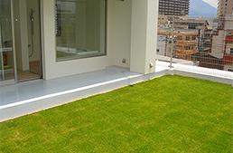 屋上緑化_1