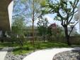 森の家_2の画像