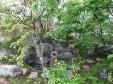 守破離之庭_4の画像
