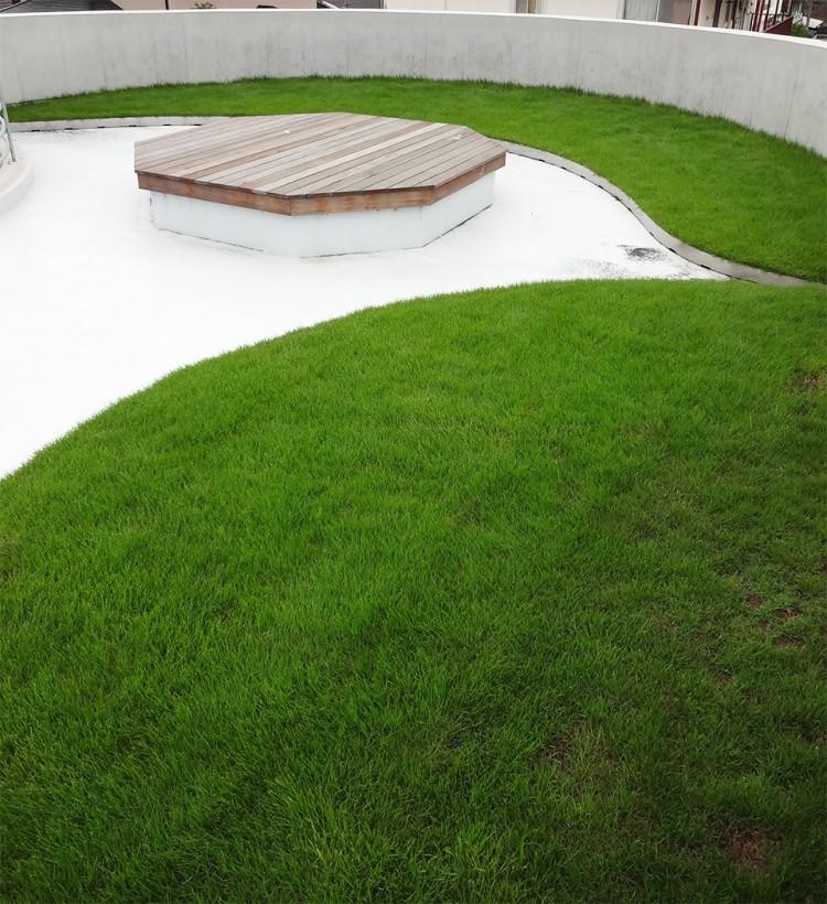 屋上緑化_1の画像