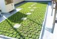 屋上緑化_3の画像