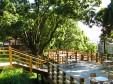 森のカフェ_1の画像