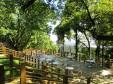 森のカフェ_2の画像