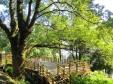 森のカフェ_3の画像