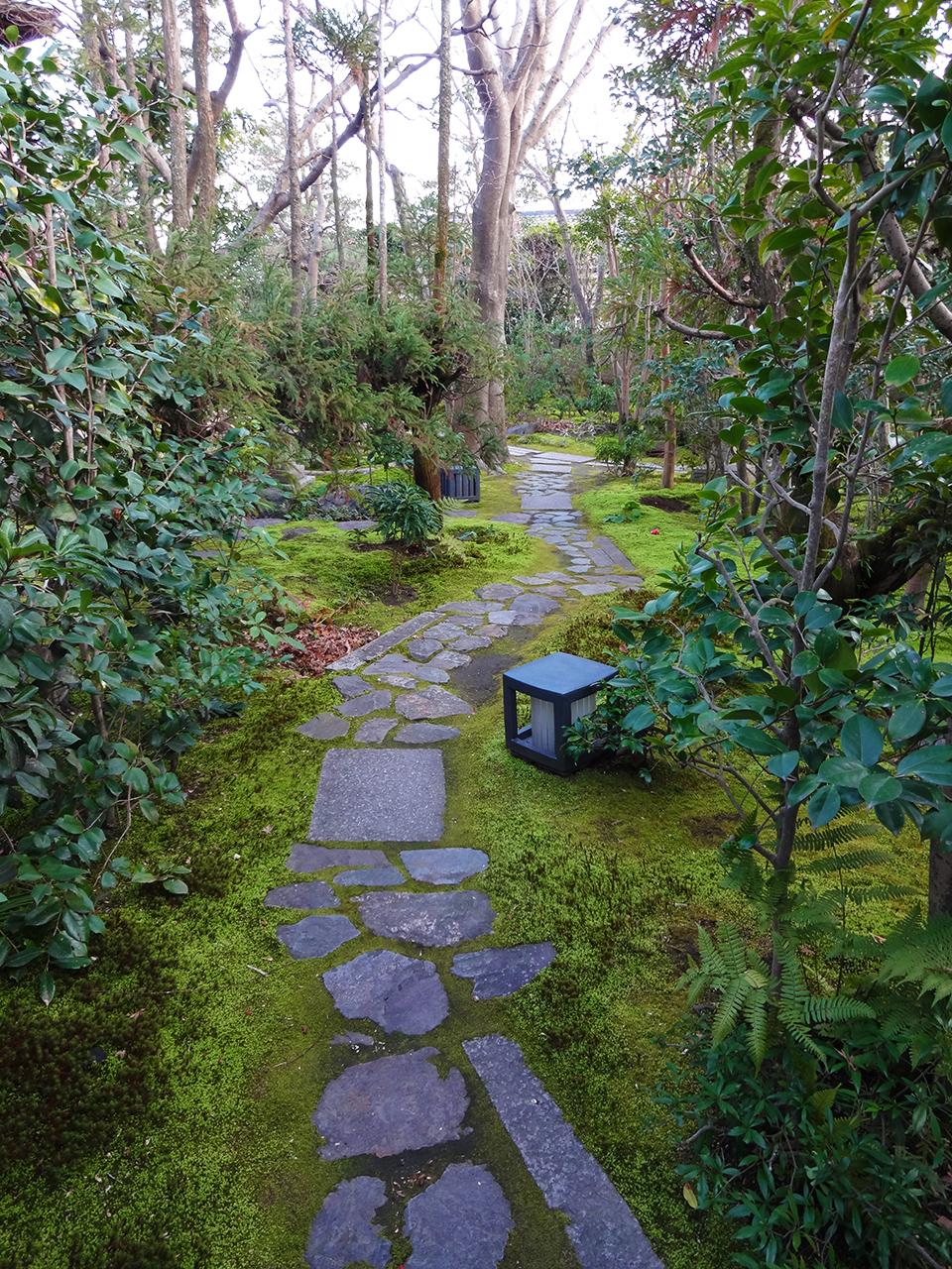 雑木の和庭タイトル画像