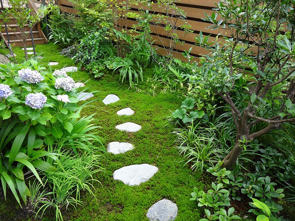 苔の小庭タイトル画像
