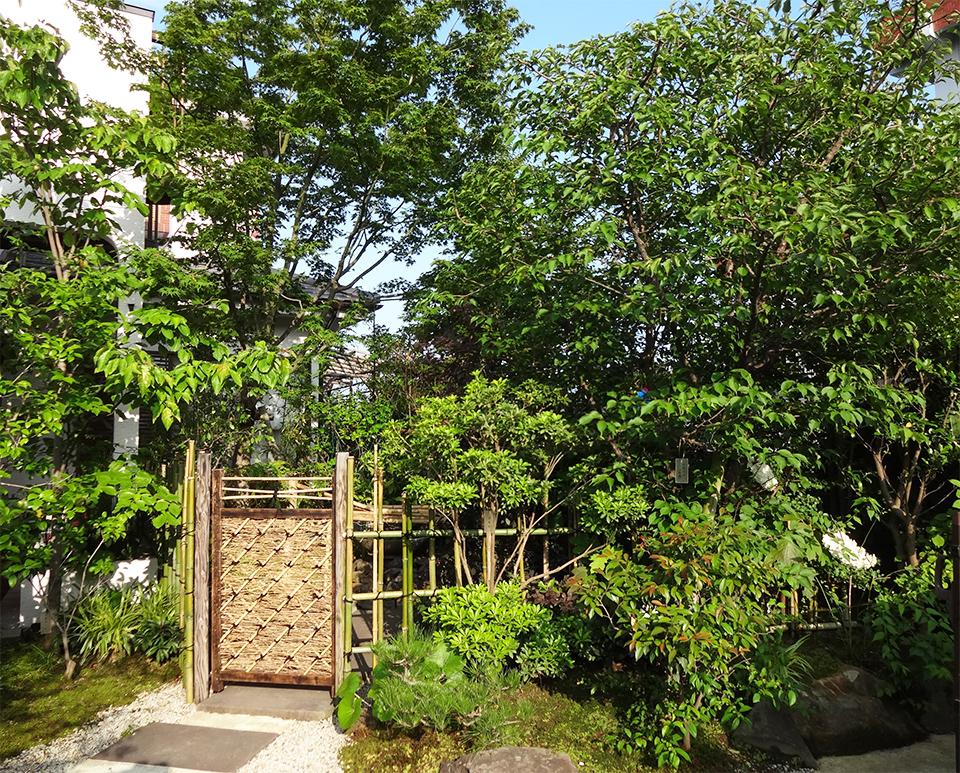 H邸 雑木の苔庭タイトル画像