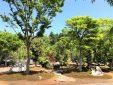 桂花園_2の画像